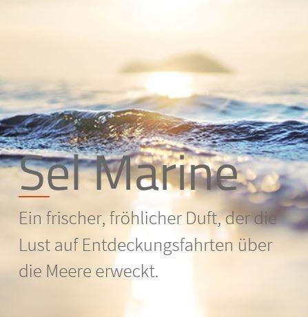 Sel Marine *** Die frische, optimistische Dufteröffnung wird durch eine aquatische Herznote abgelöst  VE: 200ml