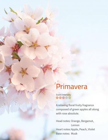 Primavera Aromaöl Ein entspannender, blumig-fruchtiger Duft aus grünem Apfel mit Rosen.