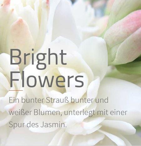 Bright Flowers Ein duftendes Band bunter und weißer Blumen.