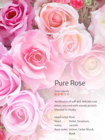 Pure Rose - Der Duft bei jeder Hochzeit! Rosenblätter, erwärmt durch eine leicht holzige Duftnote. ***