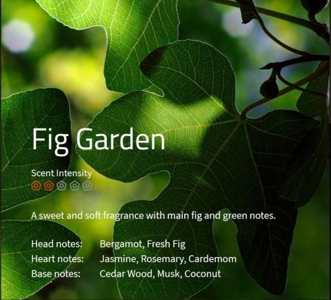 Fig Garden Aromaöl 200ml Ein leichter, blumiger Duft aus Feige und grüner Note sowie einer erfrischenden Herznote.