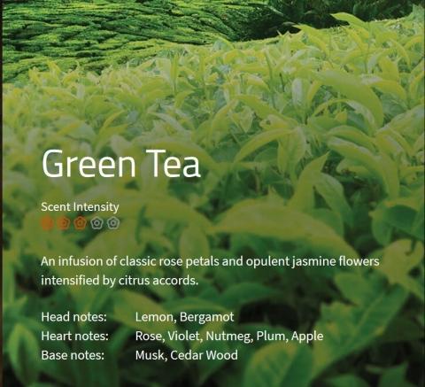 Green Tea Aromaöl 200ml Ein Aufguss aus Rosenblättern mit opulenten Jasminblüten und Zitrusnoten im Herzen.