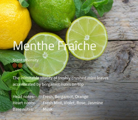Menthe Fraîche Ein Duft für pure Lebensfreude - zerstoßene Minze gekrönt durch Bergamotte.