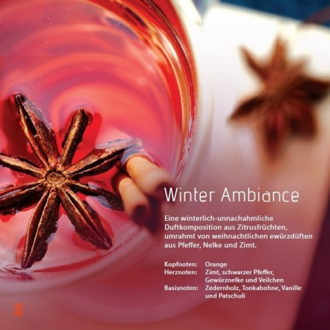 Winter Ambiance  Ambiance Aromaöl 200 ml