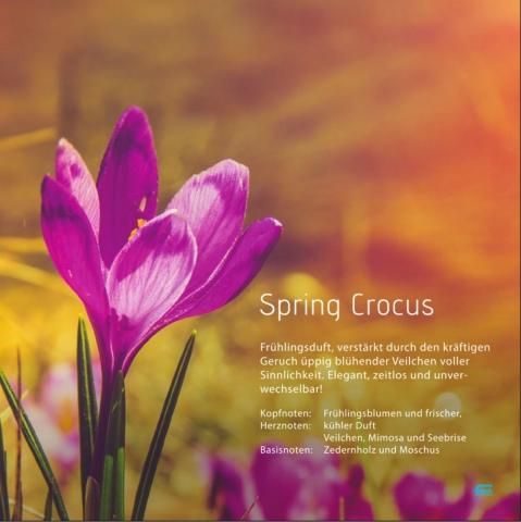 """Spring Crocus *** Der vollmundige Veilchenduft inmitten einer Waldlichtung. """"Frühling"""""""