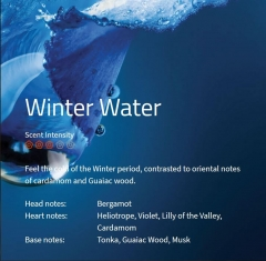 Winter Water Duftmarketing Aromaöl 200 ml