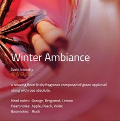 Winter Ambiance **** Der Duft nach Weihnachtsmarkt! Ein überraschender Duft aus Zitrusfrüchten mit scharfen Gewürzen wie Pfeffer, Nelken und Zimt. Die Weihnachtsstimmung!