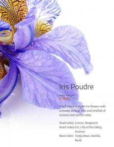 Iris Poudre  Ambiance Aroma 200 ml