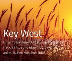 Key West ***  Ein männliches Statement! Klare Ansage aus frischer Zitrusnote und maskulinem Moschus.