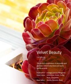 Aromaöl Velvet Beauty