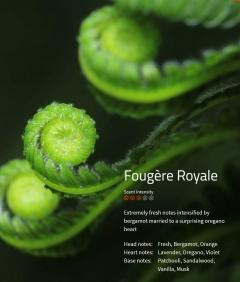Fougere Royale Aromaöl 200ml Extrem frischer Duft, der durch Bergamotte und Oregano in der Herznote noch verstärkt wird.